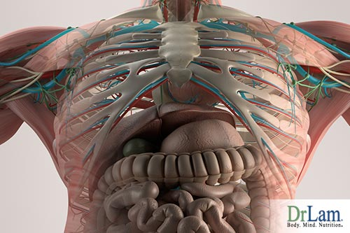 2-NEM-adrenal-hyperplasia-35195